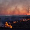 Bråtebrann / Burning the grass<br /> Hornborgasjön, Sverige 3.4.2012<br /> Canon EOS 7D + EF 17-40 mm F/4L