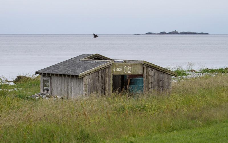 Giske ringmerkingsstasjon <br /> Giske Møre og Romsdal, 21.7.2012<br /> Canon EOS 5D Mark II + EF 17-45 mm