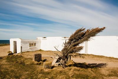 Maarup Kirke