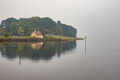 Selsø