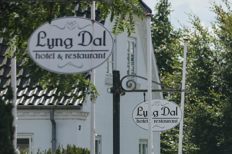 Lyng Dal i forbifarten