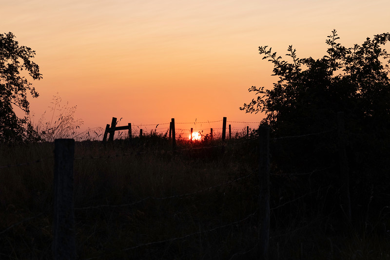 Solnedgang, Feholmen<br /> Hornborgasjön, Sverige 24.7.2021<br /> Canon EOS R5 + RF24-105mm F4 L IS USM @ 105 mm