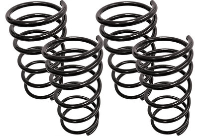 Steeda performance springs