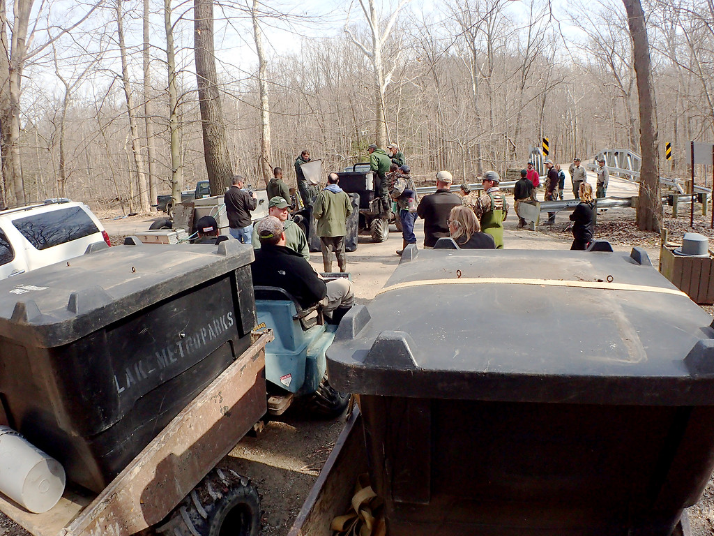 . Jonathan Tressler � The News-Herald <br> Tanks on Pugs, foreground, await their turns to be filled with 1 -1.5-pound rainbow trout April 13 at Indian Point Park in Leroy Township, as a small crowd observes the process being carried out by Lake Metroparks personnel.