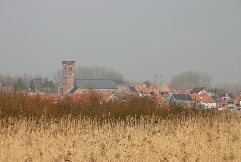 Steendorp - Kerk (vanop de dijk in Hingene - 2009)