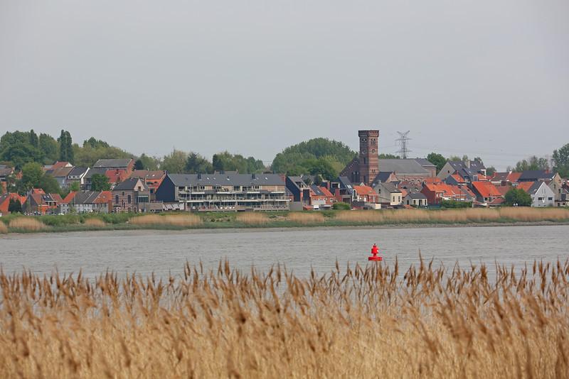 Steendorp (vanop de dijk in Hingene ter hoogte van de Notelaer - 2014)