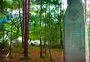Derwentwater Lake Monolith