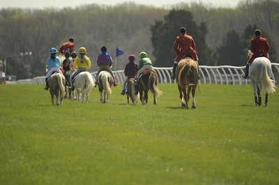 First Race - Small Pony Race - 17