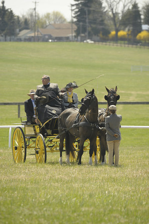 Spectators, Officials, Carriages - 12