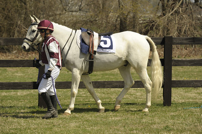Third Race - Large Pony Race - 01