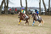 0016 - Mr  Stewart's Cheshire Foxhounds Point to Point - March 30, 2013