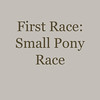018Race 1 - small Pony
