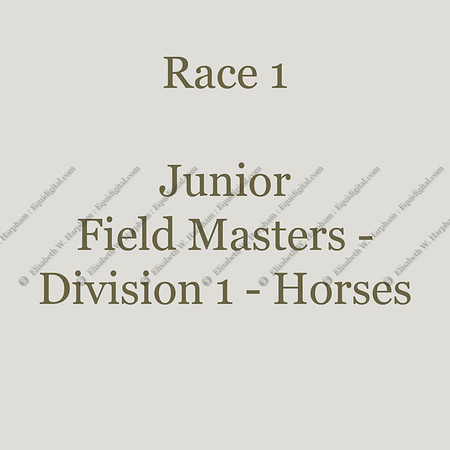 1 - Race 1 - Junior Field Masters Chase - Division 1 - Horse - 001