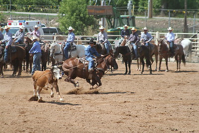 Steer Roping Championships in Deadwood