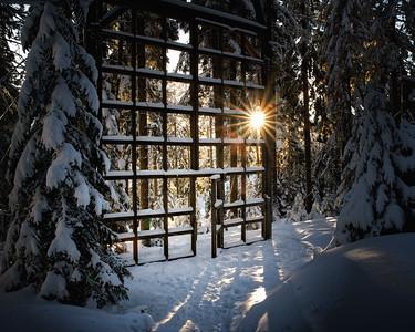 Der Dom des Waldes - Hebalm