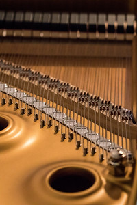 Interior view of a Steinway B, and the harp (metal plate)  and strings.