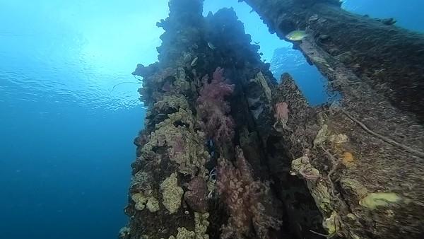 Solomon Island 2018