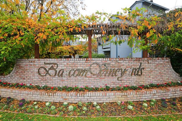 3477 Wine Barrel Way, San Jose