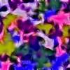 Image101Fractal1