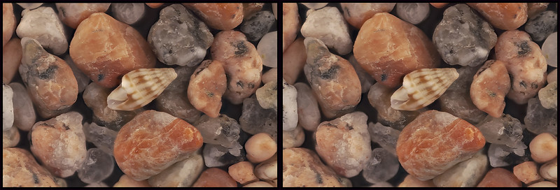 Stereo pair - 1 mm shell - Beach Sand from Cabo San Lucas - James Witt - 06/08/2019
