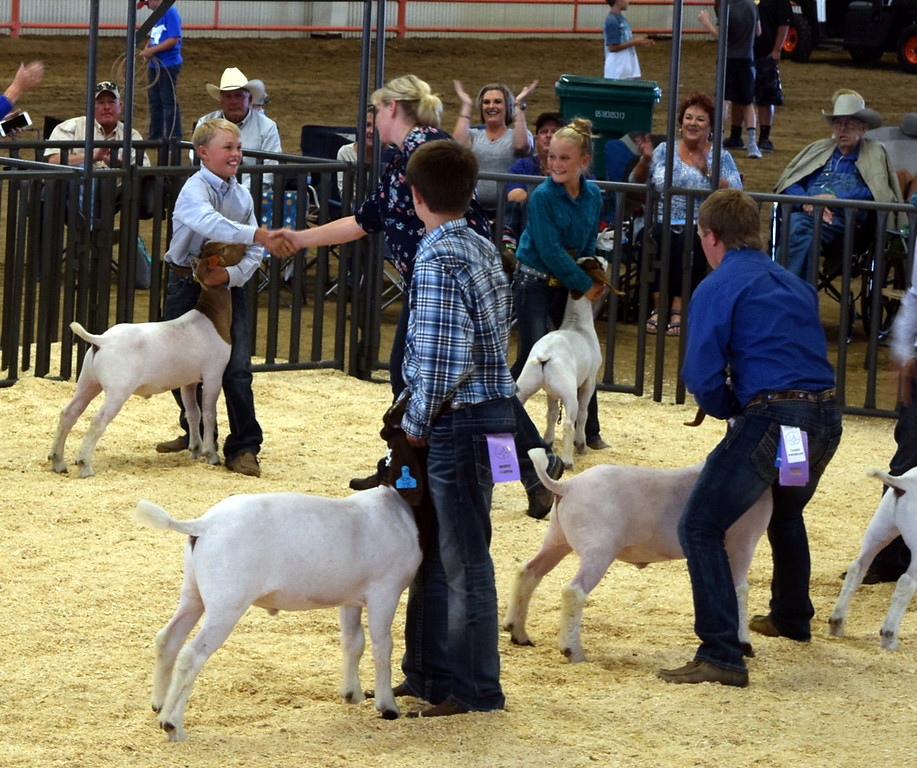 . The judge congratulates Beau Carlson on his Grand Champion Market Goat at the Logan County Fair Junior Goat Show Wednesday, Aug. 8, 2018.