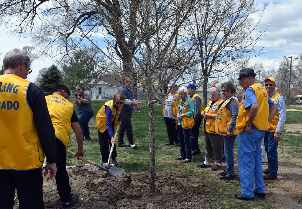 . Sterling Lions Club members take turns pouring dirt around a newly planted tree at Monahan Park during an Arbor Day celebration Friday, April 26, 2019. The Lions donated funds in honor of late member Dorothy Graber to cover the cost to purchase the five trees that were planted in the park as part of the celebration.