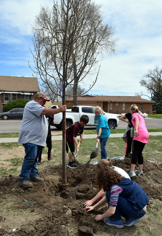 . Merino Elementary fifth graders help city parks crew members plant a tree at Monahan Park during the city of Sterling\'s annual Arbor Day celebration Friday, April 26, 2019.