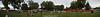 park_panorama