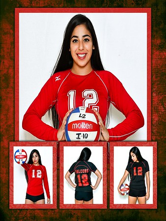 Meadow's Volleyball Pictures