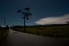 Volcano Hawaii Wright Rd. by moonlight