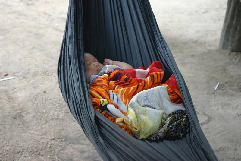 A baby in a hammock