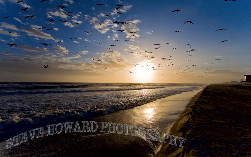 Davids Sunset