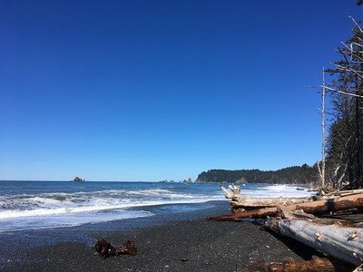 My first view of the Pacific Ocean as well on this trip - Rialto Beach did not disappoint!