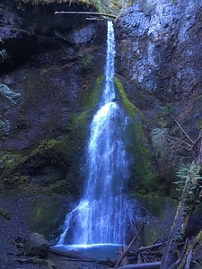 Next up:  short walk to Marymere Falls near Lake Crescent