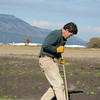 Jon Lindberg planting native shrubs in Ladd Marsh Wildlife Area.