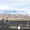 Mount Emily smiles on HCPC volunteers planting native willows at Ladd Marsh in the Grande Ronde Valley.