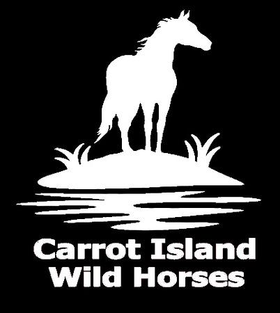 Carrot Island