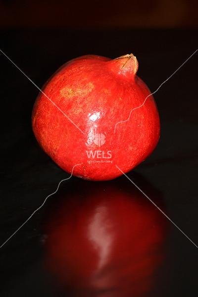Pomegranate by jduran
