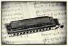 Hohner Harmonica Still Life