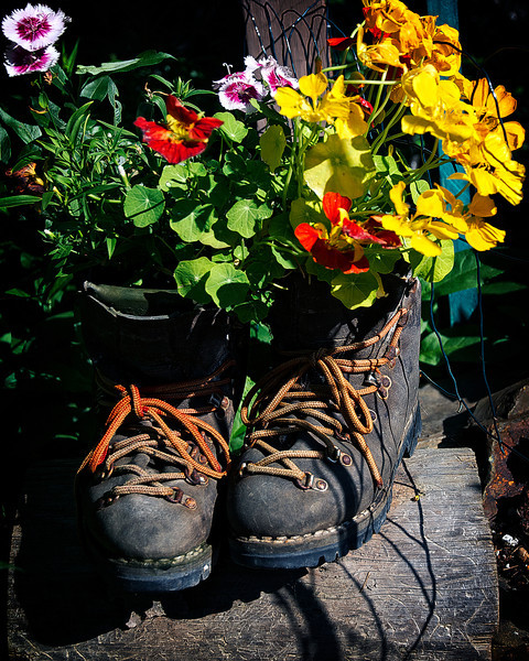 Boot flowers