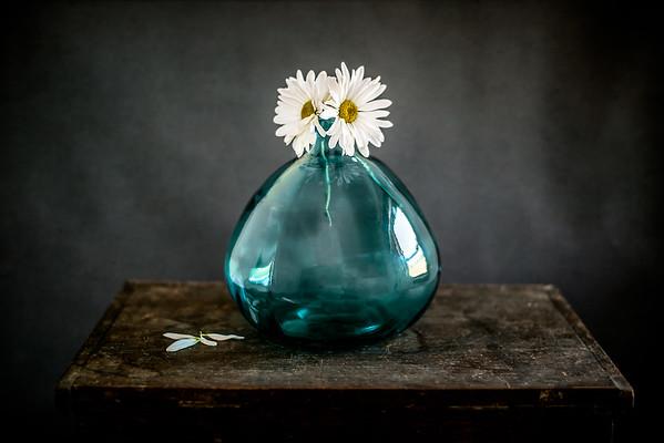 April 27 - Daisy Simplicity<br /> <br /> I love daisies!