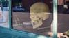 Storefront skull