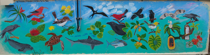 'Alalā Project Mural, painted by Connections Public Charter School students, on the Kress Building in downtown Hilo, Hawai'i