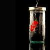 Pepper Jar pour 18x24