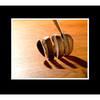 Mushroom Slice 11x14,16x20Mat