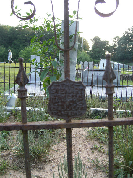 Hopewell Church cemetary, Murrayville, Georgia - Iron fence with shield