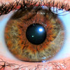 Brother's Eye <br /> Which one do you like better?