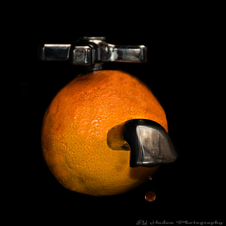 Nov.17th, 2007<br /> I found a new way to get orange juice :-). Have a great day --JY