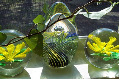 My glass paperweights in the afternoon sun