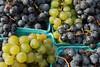 Grapes (U Sq Farmers Mkt- Sat 11 1 08)